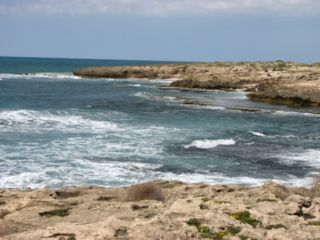 Habonim beach.jpg